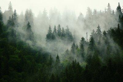 Fototapete Natur in den bergen